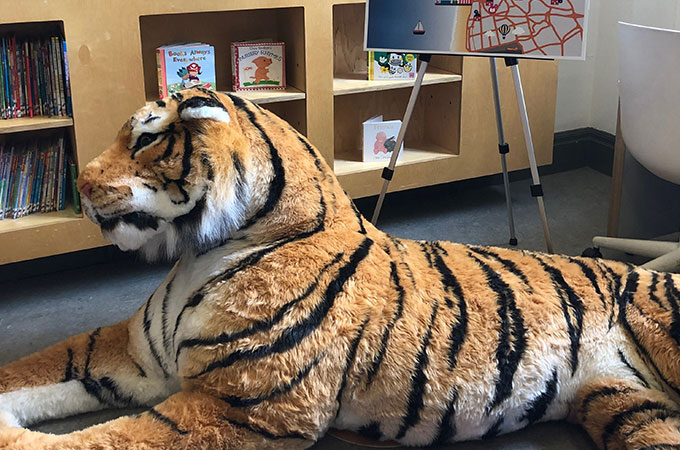 Fluffy Tiger at Blackpool Central Library